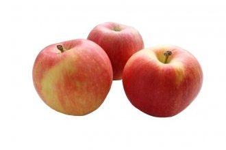 10 лучших сортов яблонь