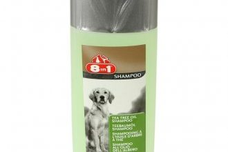 6 лучших шампуней для собак